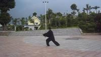 学练传统杨式太极拳85式(平易之缘)