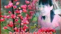 河南豫剧--铡刀下的红梅---紧紧将儿怀中抱---凤立沉香学唱