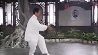 杨式太极拳38式示范 杨振河