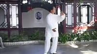 杨式太极拳38式教学(二)杨振河