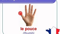 French Lesson 31 - BODY