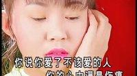 卓依婷vs凌一惠  甜歌辑款款柔情 【DVD专辑】