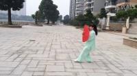 晨练48式太极双扇演练张少舫