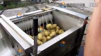 MSTP-80 土豆清洗去皮机 Potato Peeling and Washing Machine 01