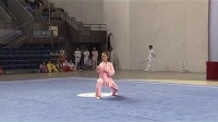 2013年世界太极拳精英赛 太极拳剑展示 04 自选太极拳
