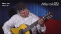 玛丁尼吉他(Martinez)德国Road show <2>