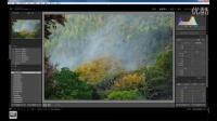 Lightroom教程 摄影色彩层次后期思路与方法 (我看见摄影义工分享课)