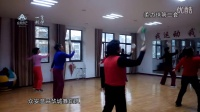广场舞-柔力球第二套-众安温哥华城舞蹈队