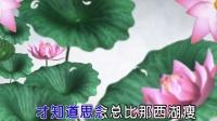 童丽-烟花三月下扬州MTV