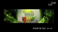 韩束北京1208发布会群星演唱会