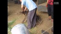 甘谷县秸秆粉碎机各种型号粉碎机