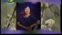 """《中华戏曲荟萃》第59集:""""刚柔并济的豫剧"""""""
