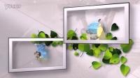008干净简约的爱心叶子婚礼相片展示-创造太阳工作室