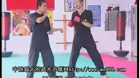 魏峰李小龙截拳道教学ACD2.拳法01_标清