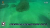 odepro  DIV08V水下拍摄效果视频