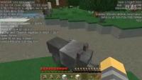 【唯一】我的世界-Minecraft《伟哥的MC领域服生存-第一集(下)》