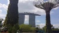 """国际版""""妈妈去哪儿""""赴新加坡第一天:参观世界最大人工瀑布 体验空中走廊"""