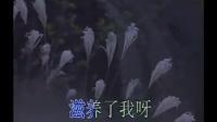01张伟进-读毛主席的书(KTV版)