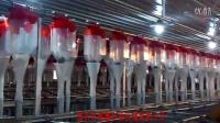母猪料线2_0猪用饲养设备/猪场自动供料系统/母猪定量杯/母猪定量饲喂系统/母猪定量自动加料