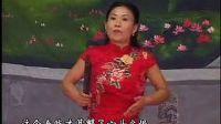 胡银花【包公案】15《刘天顺太师府丧命》上 胡银花