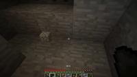 【Minecraft轨迹】我的世界:斧头挖树!我这也是醉了