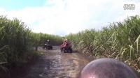 毛里求斯-南部四驱车