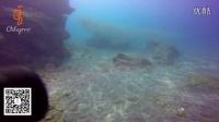 odepro奥德宝DIV10潜水系列视频:1