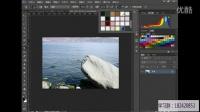 Photoshop cs6官方基础入门到精通教程 第31课.图案图章工具