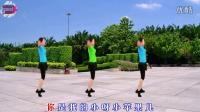 宇美广场舞原创《最炫小苹果》背面及分解教程