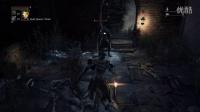 【石猫】血缘诅咒新角色训练 吊打NPC