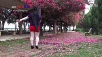 花开的时候你就来看我zhanghongaaa自编广场舞教学版原创32步原创
