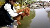超搞笑狗狗还没进水就开始游泳了