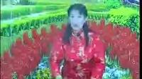 刘玲;河南坠子《徐桂英探监》