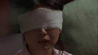 杰克奥特曼17怪鸟泰罗切斯东京大空袭【上译配音】【繁体中文字幕】