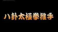 中华武术展现工程;八卦太极拳_标清