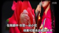 王二妮--姐妺花 [ MV音乐片] [宽屏超清]