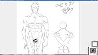 名动漫原画基础视频教程曾老师《角色》第六节 人体刻画步骤