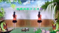 开心快乐广场舞【2015年最新广场舞三月三编舞青春飞舞】简单易学