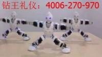 炫风舞蹈机器人——小苹果