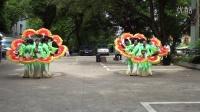 在希望的田野上麻双巧女人广场舞20150622南康麻双远凤数码