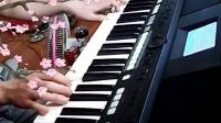 雅马哈 S650 电子琴演奏《醉相思》 寻梦演奏