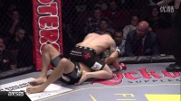 Amazing MMA Submissions in 2014