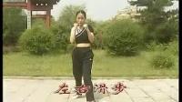 中国武术散打教学(一)格斗势与步法基础篇-----教练祁喧_标清
