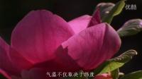 海宁中学地理组制作《诗话地理》——《大林寺桃花》