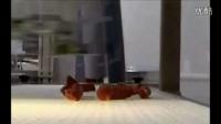全自动化高速食品分拣设备系统