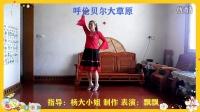 蝶舞飘飘广场舞《呼伦贝尔大草原》201507201652