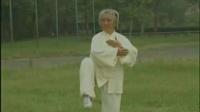 85式传统 杨式太极拳 第59- 85式教学