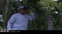 四海钓鱼渔我同行化绍新海南琼海3水库钓鲤鱼视频钓鱼视频