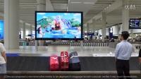 香港国际机场广告参考:  海洋公园夏水礼