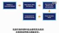 1. TaqMan基因表达试剂盒- 介绍_标清